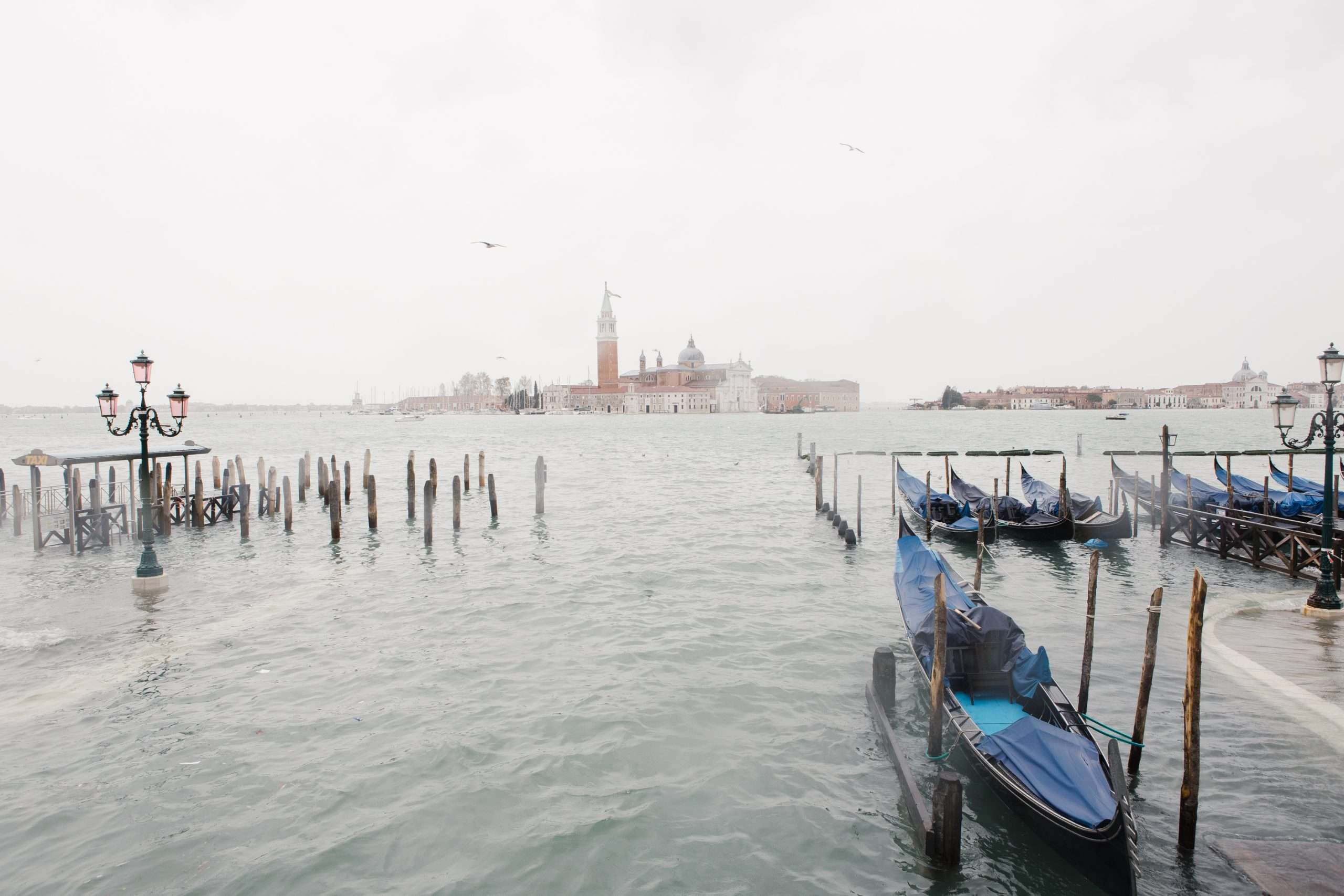Acqua Alta Venice 2019 Flooding in Venice